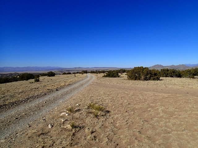 311 Camino Cerro Chato, Madrid, NM 87010 (MLS #202101239) :: Neil Lyon Group | Sotheby's International Realty