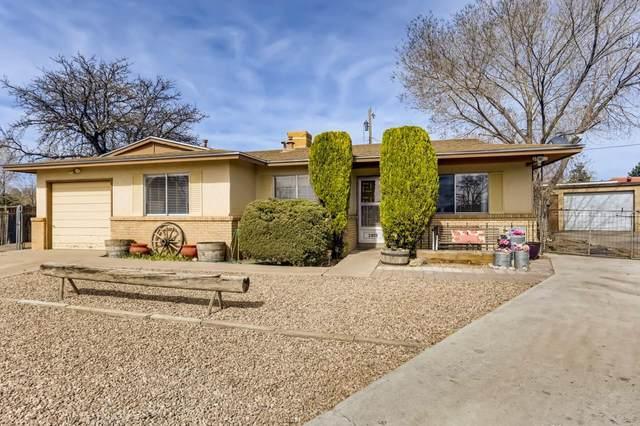 2813 Calle Princesa Juana, Santa Fe, NM 87507 (MLS #202101264) :: Neil Lyon Group | Sotheby's International Realty