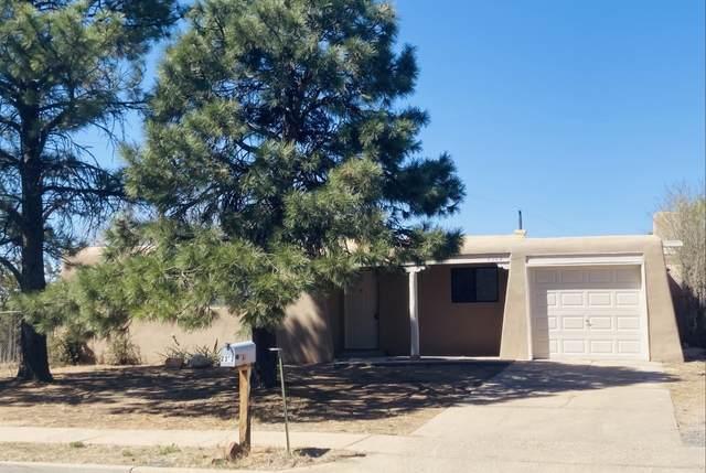 2362 Ruta Corta, Santa Fe, NM 87507 (MLS #202101282) :: Berkshire Hathaway HomeServices Santa Fe Real Estate