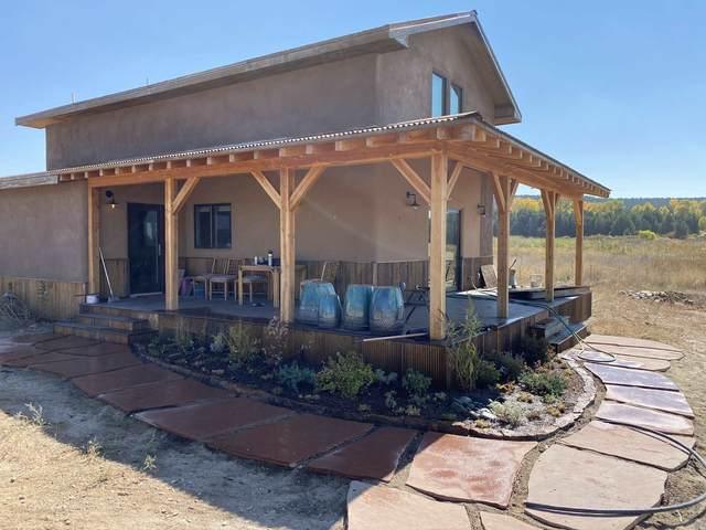 48 Hondo Seco Rd #B, Arroyo Hondo, NM 87513 (MLS #202101289) :: Stephanie Hamilton Real Estate
