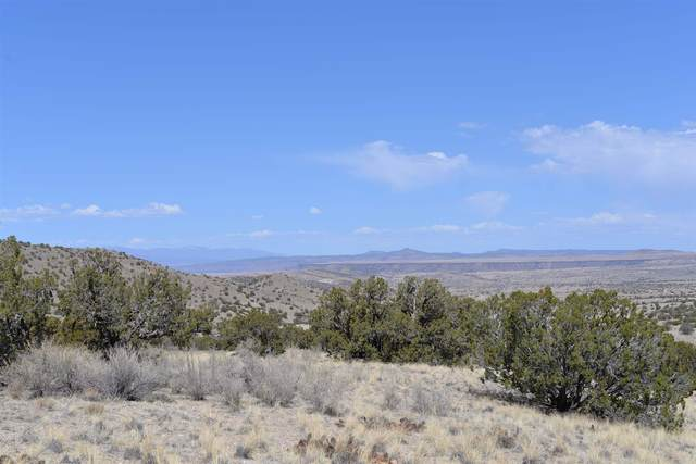 0 Camino Cerro Chato, Madrid, NM 87010 (MLS #202101290) :: Stephanie Hamilton Real Estate