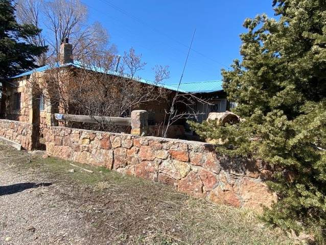151 Terrace Ave, Chama, NM 87520 (MLS #202101292) :: Summit Group Real Estate Professionals