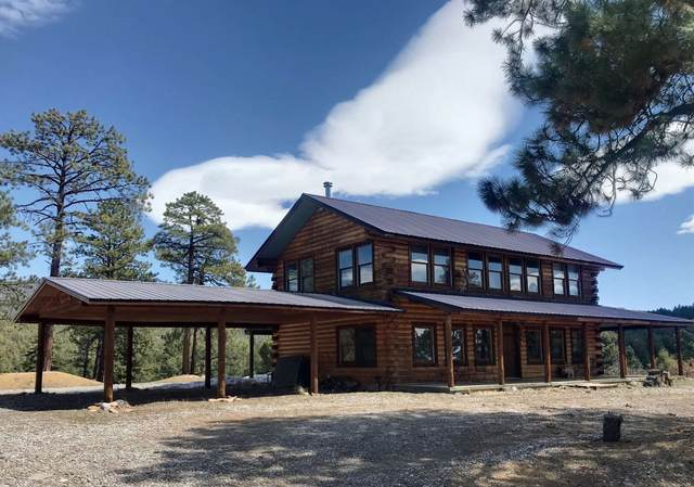 344 Buckman Road, Chama, NM 87520 (MLS #202101303) :: The Very Best of Santa Fe