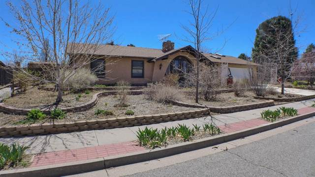 557 Todd Loop S, Los Alamos, NM 87544 (MLS #202101305) :: The Very Best of Santa Fe