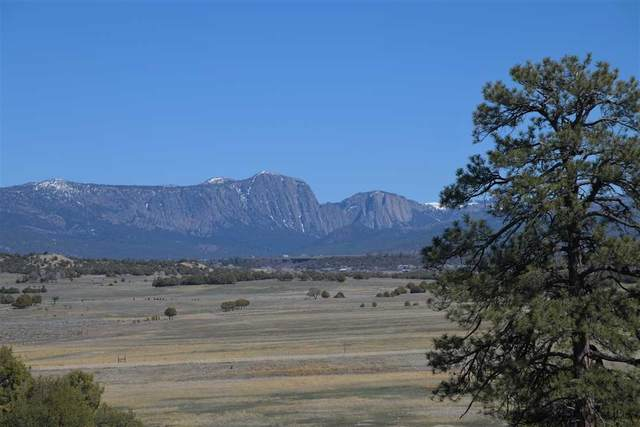 0 Longhorn Estates, Chama, NM 87520 (MLS #202101318) :: Summit Group Real Estate Professionals