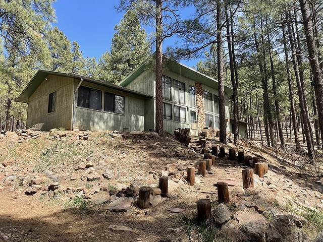 6 Pine Tree Rd, Buena Vista, NM 87745 (MLS #202101338) :: Stephanie Hamilton Real Estate
