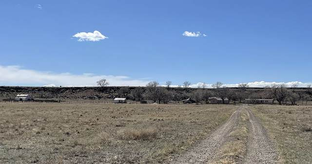 39079 Old Highway 85, Wagon Mound, NM 87752 (MLS #202101340) :: Stephanie Hamilton Real Estate