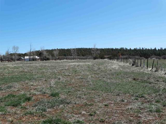 301 County Road, Canjilon, NM 87515 (MLS #202101343) :: Summit Group Real Estate Professionals