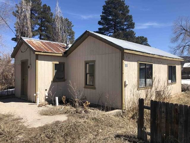 477 7th Street, Chama, NM 87520 (MLS #202101357) :: Summit Group Real Estate Professionals