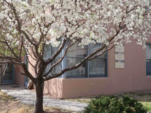 3600 Cerrillos 401A, Santa Fe, NM 87507 (MLS #202101373) :: Neil Lyon Group | Sotheby's International Realty