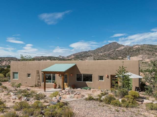 247 Hwy 554, Abiquiu, NM 87510 (MLS #202101376) :: Summit Group Real Estate Professionals