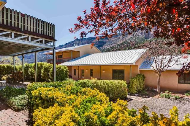 16441 Hwy 4, Jemez Springs, NM 87025 (MLS #202101396) :: The Very Best of Santa Fe