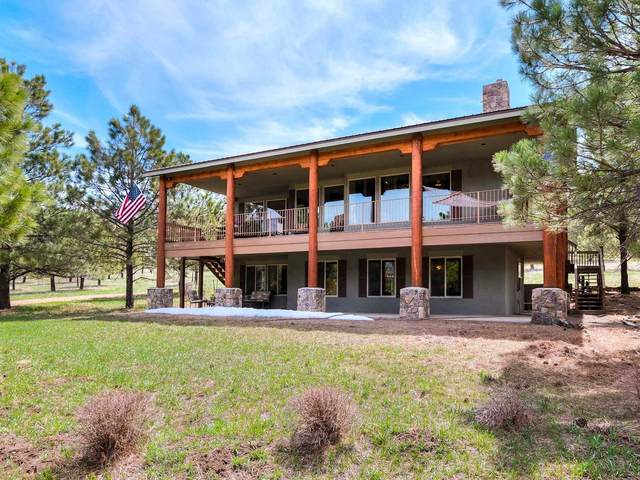 19 Nudo Court, Rociada, NM 87742 (MLS #202101425) :: Stephanie Hamilton Real Estate