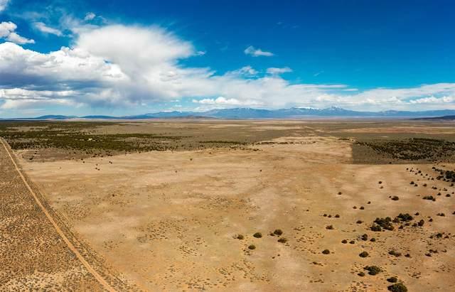 Forest Service Road 285L, Tres Piedras, NM 87577 (MLS #202101462) :: Stephanie Hamilton Real Estate