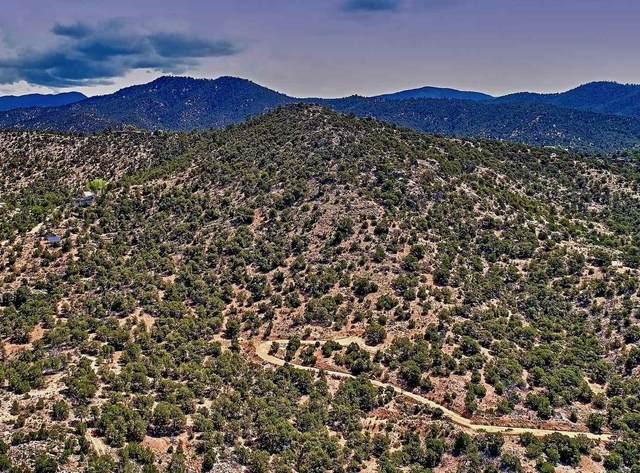 125 Cloudstone Drive, Santa Fe, NM 87505 (MLS #202101488) :: The Very Best of Santa Fe