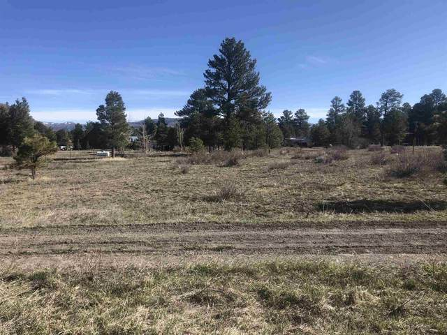 TBD Capulin Road, Chama, NM 87520 (MLS #202101494) :: The Very Best of Santa Fe