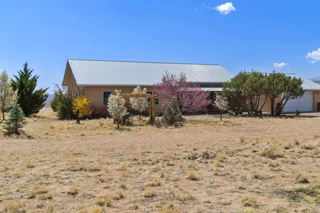 78 Private Drive 1614A, Medanales, NM 87548 (MLS #202101504) :: The Very Best of Santa Fe
