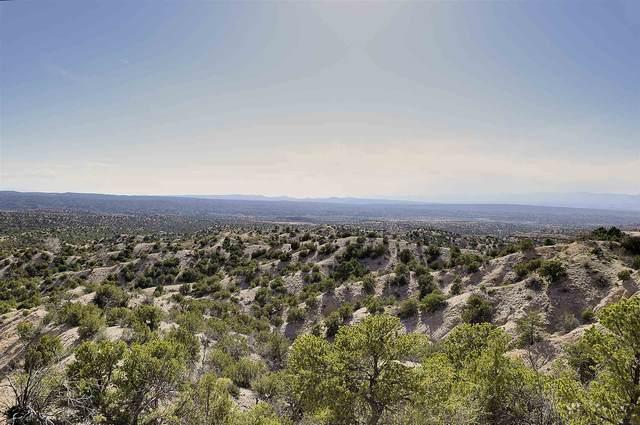 25 Zambra Way, Santa Fe, NM 87506 (MLS #202101610) :: The Very Best of Santa Fe