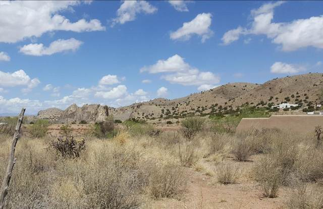 31 River, Cerrillos, NM 87010 (MLS #202101627) :: Berkshire Hathaway HomeServices Santa Fe Real Estate