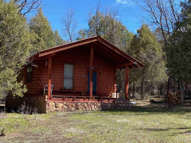 245 Cr 341, Chama, NM 87520 (MLS #202101687) :: The Very Best of Santa Fe