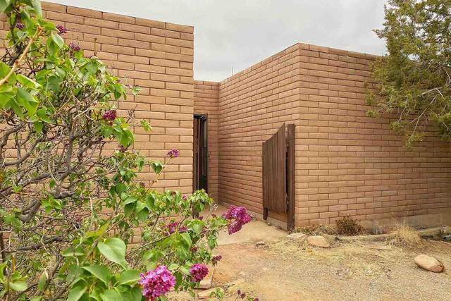 244 Rabbit, Santa Fe, NM 87508 (MLS #202101698) :: Stephanie Hamilton Real Estate