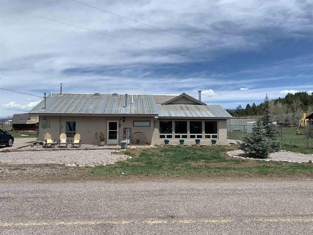 64 State Rd 514, Los Ojos, NM 87551 (MLS #202101751) :: The Very Best of Santa Fe