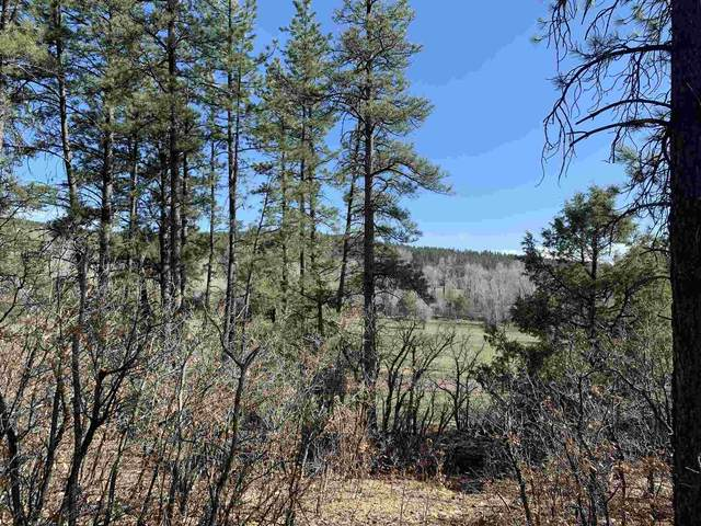 TBD County Rd 342, Chama, NM 87520 (MLS #202101755) :: The Very Best of Santa Fe