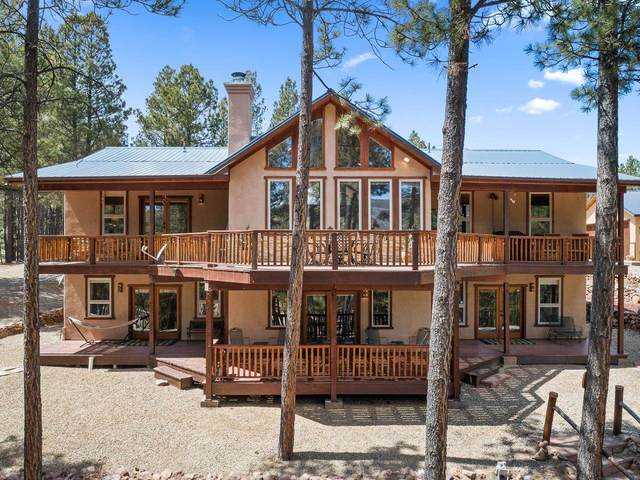 33 Conchas Dr, Angel Fire, NM 87710 (MLS #202101762) :: The Very Best of Santa Fe