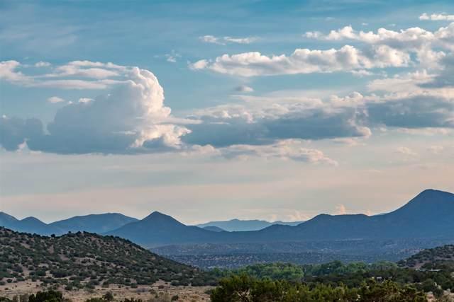 64 Goose Downs Road, Galisteo, NM 87540 (MLS #202101770) :: The Very Best of Santa Fe