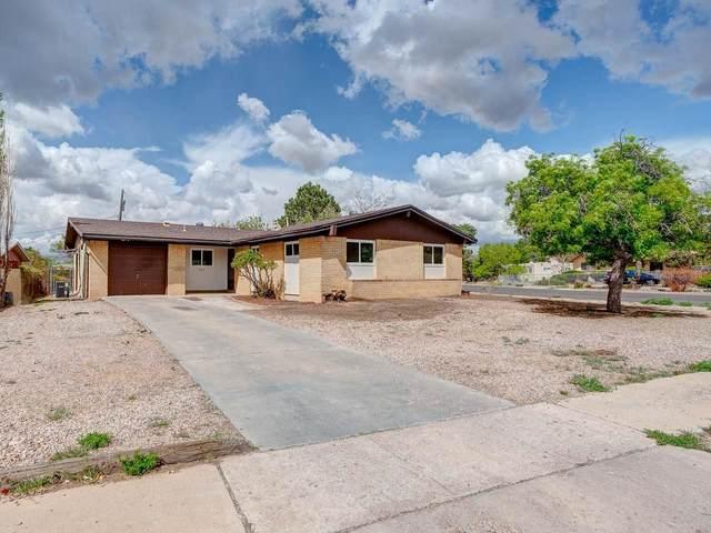 2350 Ruta Corta, Santa Fe, NM 87507 (MLS #202101772) :: Neil Lyon Group | Sotheby's International Realty