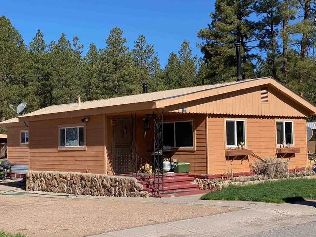 498 Cedar Ave, Chama, NM 87520 (MLS #202101785) :: The Very Best of Santa Fe
