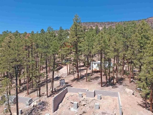 1600 Ponderosa Dr., Jemez Springs, NM 87025 (MLS #202101786) :: Neil Lyon Group | Sotheby's International Realty