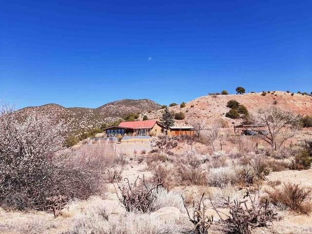 11 County Rd 70, Dixon, NM 87527 (MLS #202101833) :: Berkshire Hathaway HomeServices Santa Fe Real Estate