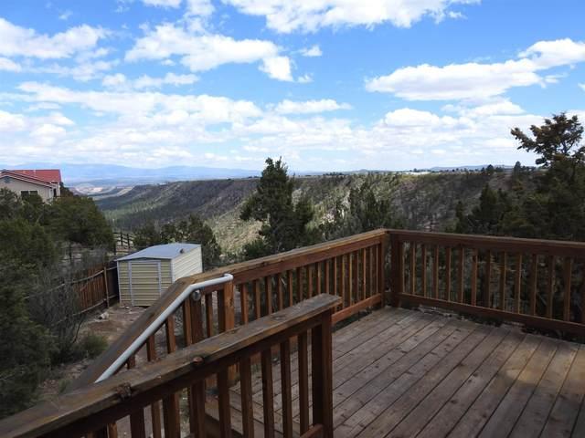 993 Capulin Road, Los Alamos, NM 87544 (MLS #202101839) :: Neil Lyon Group | Sotheby's International Realty