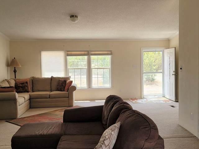 68 Oceanview, Cerrillos, NM 87010 (MLS #202101847) :: Summit Group Real Estate Professionals