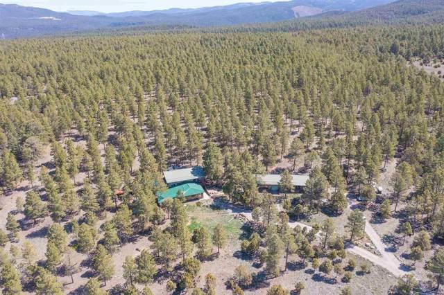 138 Llano De La Llegua, Rodarte, NM 87579 (MLS #202101855) :: Summit Group Real Estate Professionals