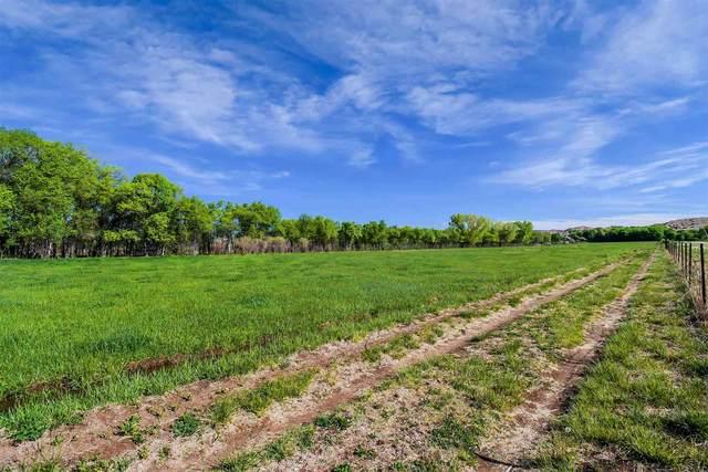 TBD County Rd 56, Chamita, NM 87566 (MLS #202101876) :: Berkshire Hathaway HomeServices Santa Fe Real Estate