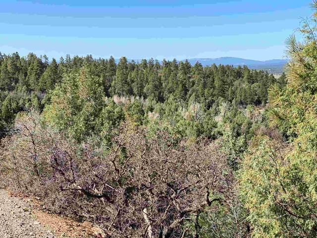0 Unit 6, Tract 2, Ponderosa, Chama, NM 87520 (MLS #202101895) :: Berkshire Hathaway HomeServices Santa Fe Real Estate
