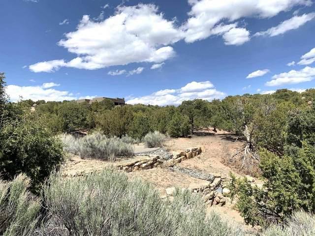 829 Calle David, Santa Fe, NM 87506 (MLS #202101916) :: Stephanie Hamilton Real Estate