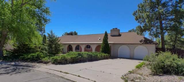 131 Rim Rd., Los Alamos, NM 87544 (MLS #202101930) :: Neil Lyon Group | Sotheby's International Realty