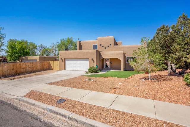 878 Camino Consuelo, Santa Fe, NM 87507 (MLS #202101969) :: Summit Group Real Estate Professionals