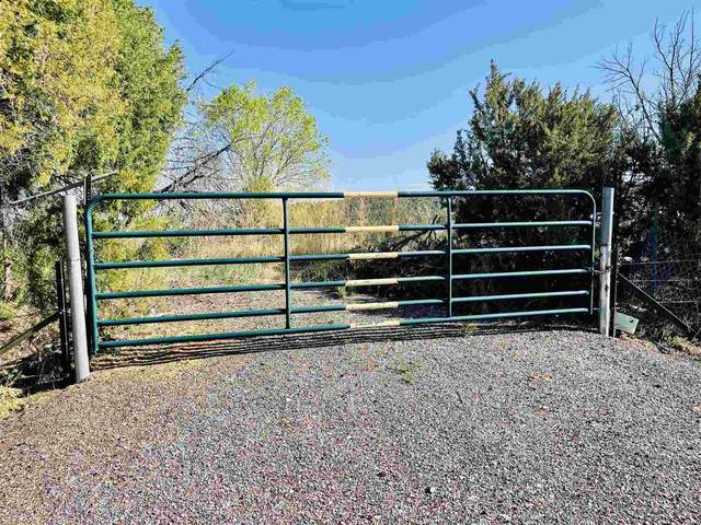 Tract C State Road 76, Truchas, NM 87578 (MLS #202101996) :: Berkshire Hathaway HomeServices Santa Fe Real Estate