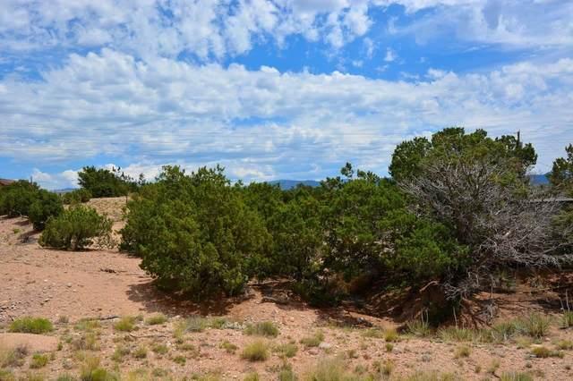 4749A Rivers Edge Lane, Lot 2, Santa Fe, NM 87507 (MLS #202102062) :: The Very Best of Santa Fe