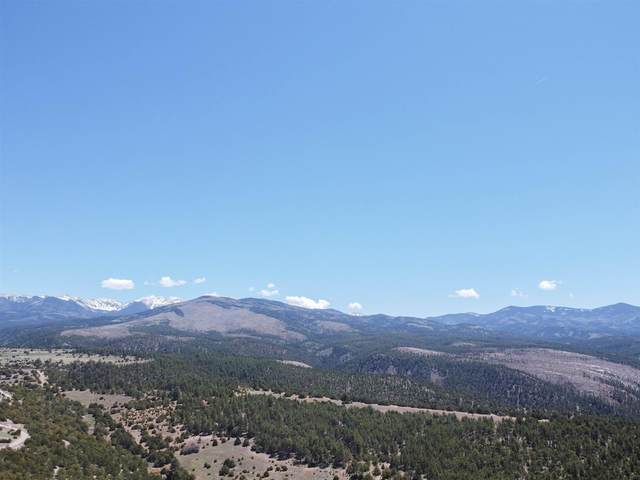 505 County Route 78, Truchas, NM 87578 (MLS #202102115) :: Summit Group Real Estate Professionals