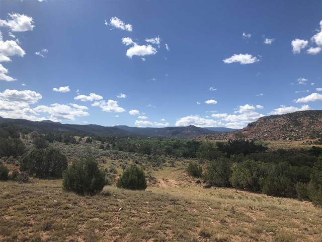 Lot 2 Los Cuervos   Cr 0211, Youngsville, NM 87064 (MLS #202102205) :: Neil Lyon Group   Sotheby's International Realty