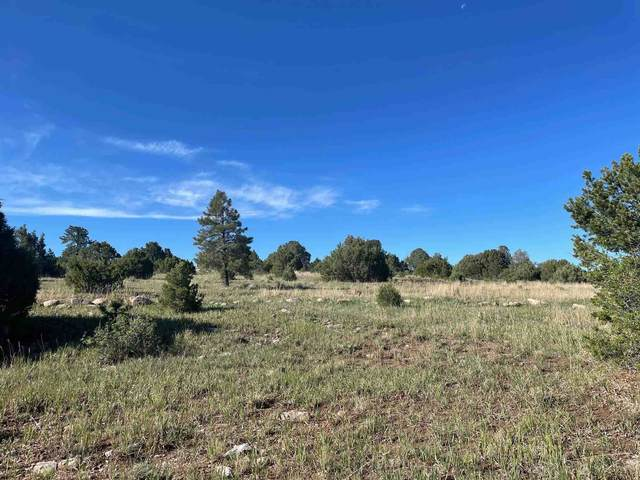 Parcel A-1 County Road 78, Truchas, NM 87578 (MLS #202102255) :: Summit Group Real Estate Professionals