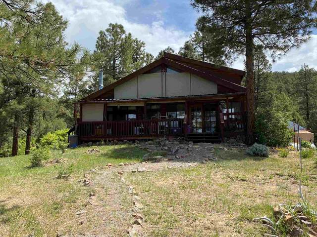 38 Pd 1781A, Chama, NM 87520 (MLS #202102286) :: Summit Group Real Estate Professionals