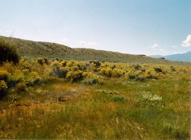 - Blueberry Hill Road, Taos, NM 87529 (MLS #202102331) :: Berkshire Hathaway HomeServices Santa Fe Real Estate