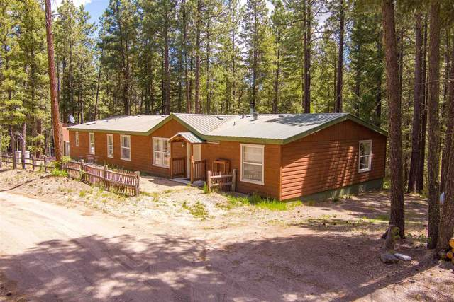 11 Lauer Ln, Jemez Springs, NM 87025 (MLS #202102345) :: Summit Group Real Estate Professionals