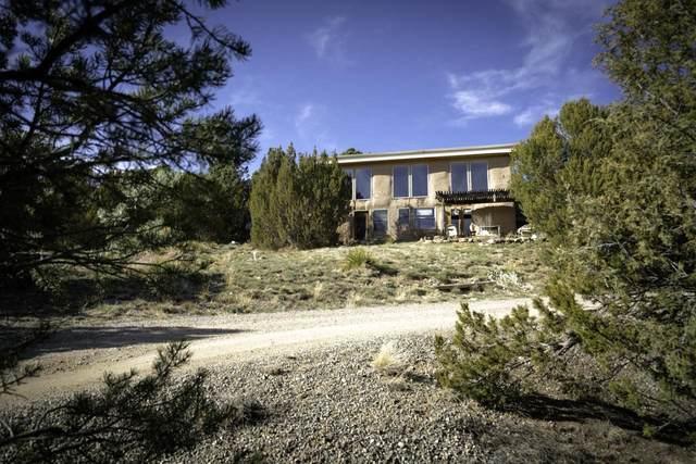 67 N Old State Road 3, Arroyo Hondo, NM 87513 (MLS #202102377) :: Berkshire Hathaway HomeServices Santa Fe Real Estate